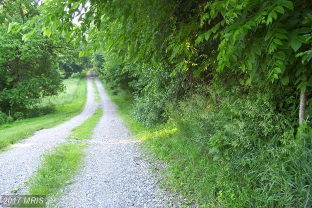 Hardwood Lane, Keedysville, MD 21756 (#WA8665843) :: LoCoMusings