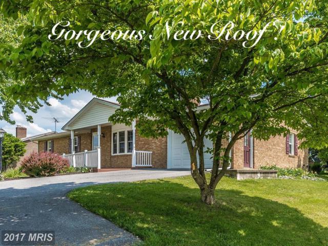 17911 Garden View Road, Hagerstown, MD 21740 (#WA9953462) :: LoCoMusings