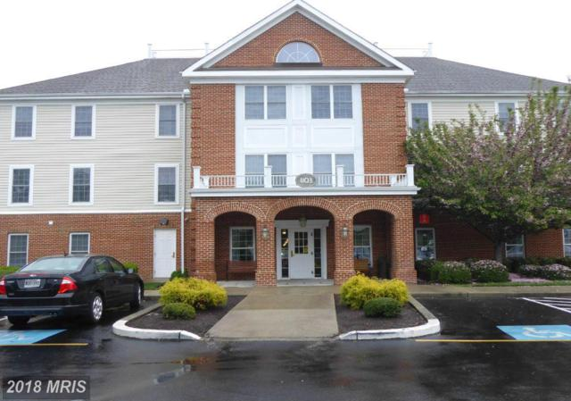 1103 Schumaker Drive C-205, Salisbury, MD 21804 (#WC9948803) :: Pearson Smith Realty