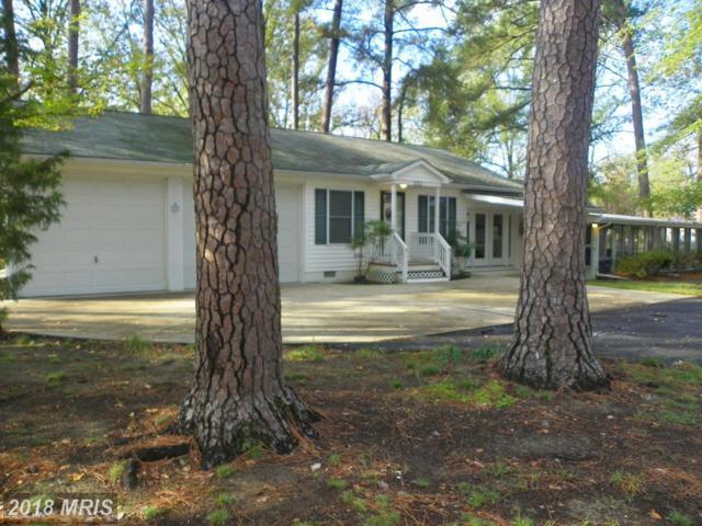 1313 Bancroft Avenue, Colonial Beach, VA 22443 (#WE10097567) :: The Bob & Ronna Group