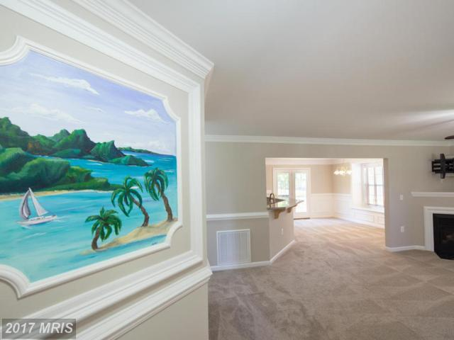 1355 Holly Vista Drive, Colonial Beach, VA 22443 (#WE9919283) :: LoCoMusings