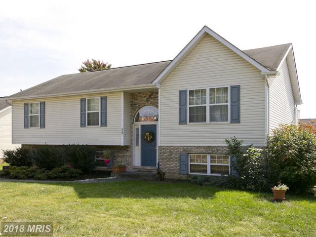 313 Tevis Street, Winchester, VA 22601 (#WI10062837) :: Pearson Smith Realty