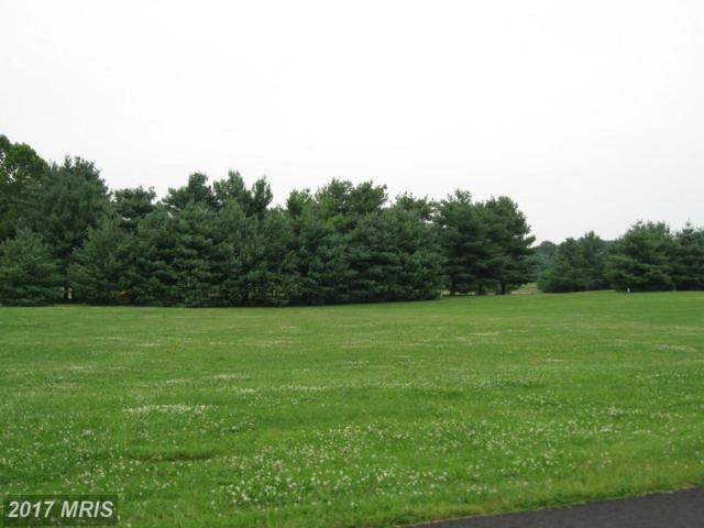 LOT 21 Bowling View Road, Front Royal, VA 22630 (#WR9549074) :: LoCoMusings