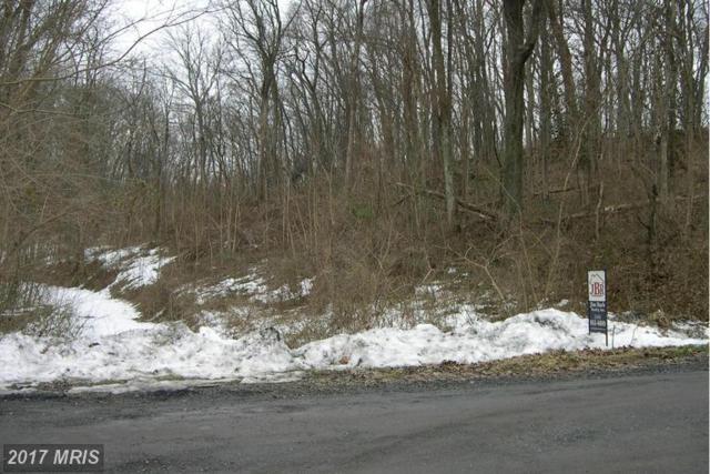Harris Drive, Front Royal, VA 22630 (#WR9566316) :: LoCoMusings