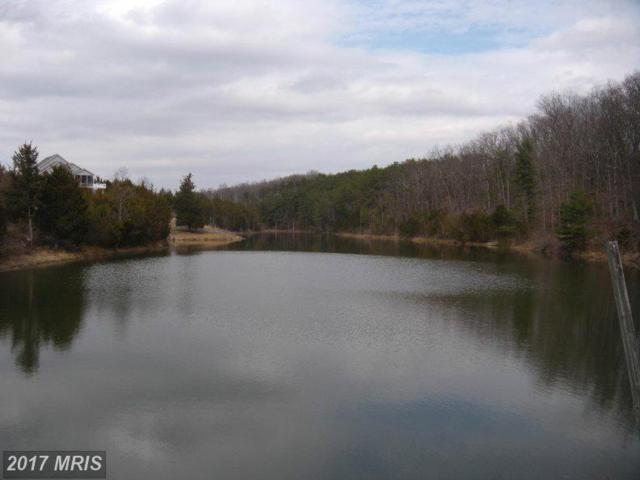 LOT #10 Great Lake Drive, Middletown, VA 22645 (#WR9612797) :: Pearson Smith Realty