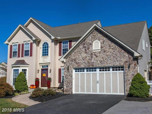 215 Lakeview Drive, Spring Grove, PA 17362 (#YK10073081) :: Pearson Smith Realty