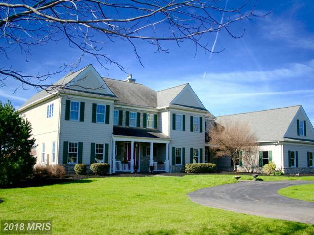 3060 Ferree Hill Road, York, PA 17403 (#YK9938847) :: Colgan Real Estate