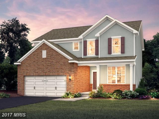 8204 Meadowood Drive #3, Hanover, MD 21076 (#AA10002355) :: Pearson Smith Realty