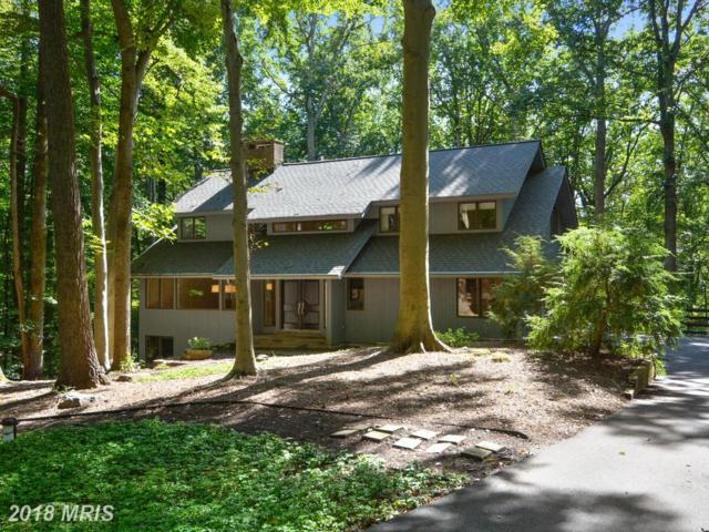 726 Intrepid Way, Davidsonville, MD 21035 (#AA10018352) :: Pearson Smith Realty