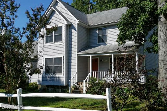 1702 Lake Avenue, Shady Side, MD 20764 (#AA8733633) :: LoCoMusings