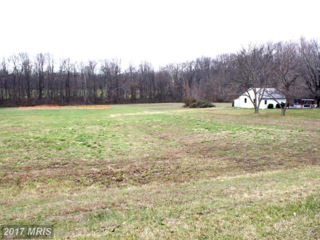 3650 Muddy Creek Road, Edgewater, MD 21037 (#AA9550913) :: Pearson Smith Realty