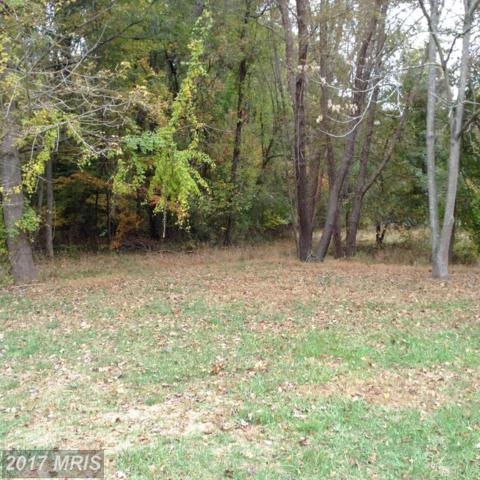 Residue Area, Edgewater, MD 21037 (#AA9772343) :: Pearson Smith Realty