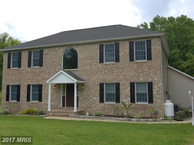 7832 Water Oak Point Road, Pasadena, MD 21122 (#AA9948395) :: Pearson Smith Realty
