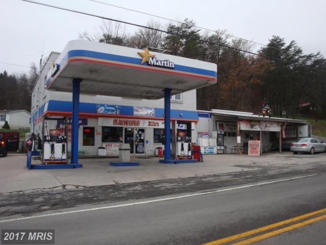 21514 National Pike, Flintstone, MD 21530 (#AL8533144) :: Pearson Smith Realty