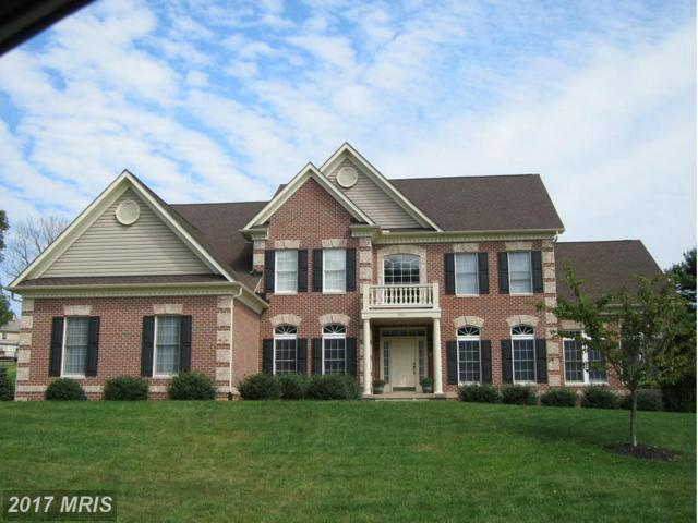 10-W Farm Meadow Court, Freeland, MD 21053 (#BC9630767) :: Pearson Smith Realty