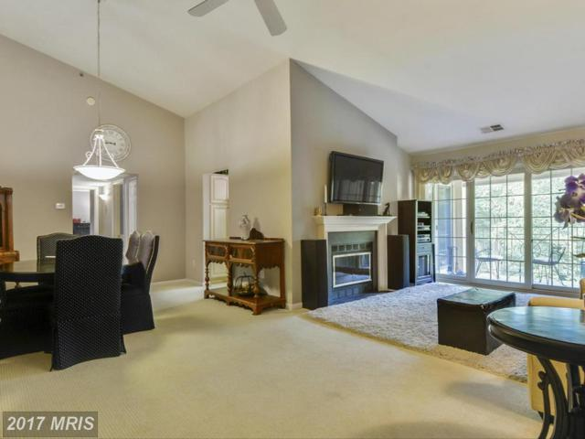 14201 Quail Creek Way #303, Sparks Glencoe, MD 21152 (#BC9947254) :: Pearson Smith Realty