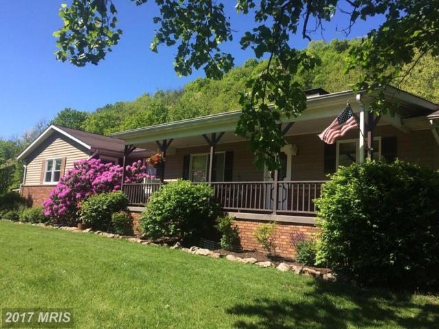 2207 Cooks Mill Road, Hyndman, PA 15545 (#BD9874875) :: Pearson Smith Realty
