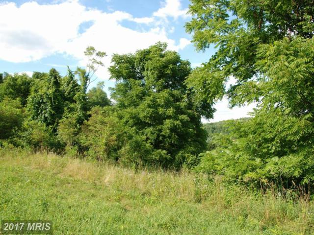 Rooney Road, Hedgesville, WV 25427 (#BE8757049) :: Hill Crest Realty