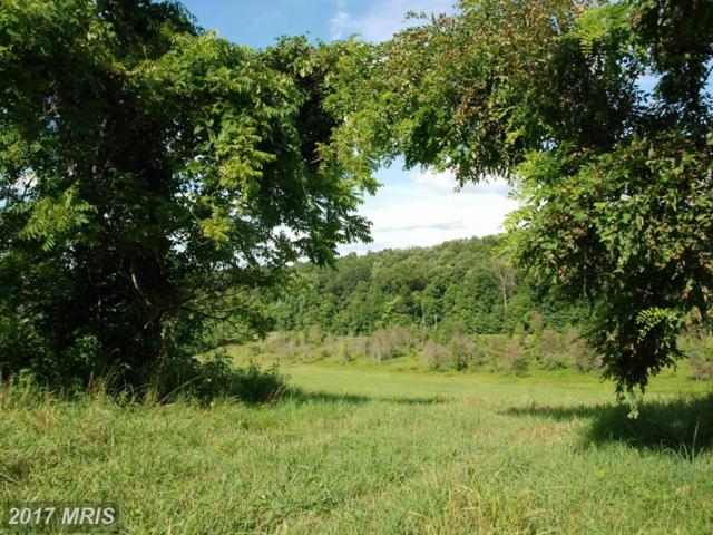 Rooney Road, Hedgesville, WV 25427 (#BE8757052) :: Pearson Smith Realty