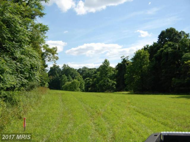 Rooney Road, Hedgesville, WV 25427 (#BE8757619) :: Hill Crest Realty