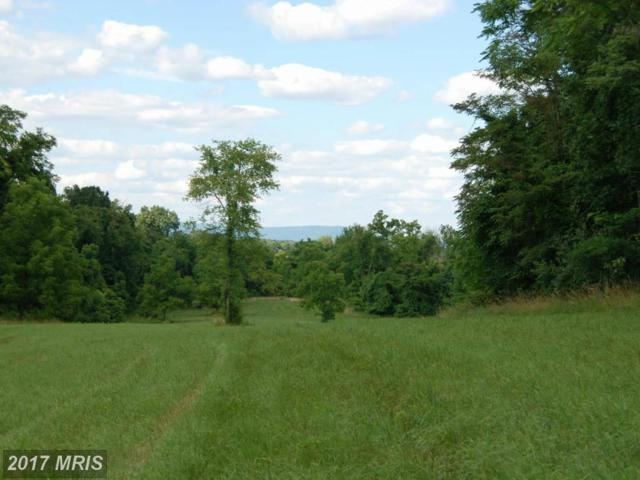 Rooney Road, Hedgesville, WV 25427 (#BE8757659) :: Hill Crest Realty