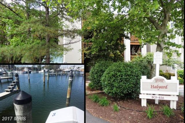 826 Runabout Loop #826, Solomons, MD 20688 (#CA9903966) :: RE/MAX One