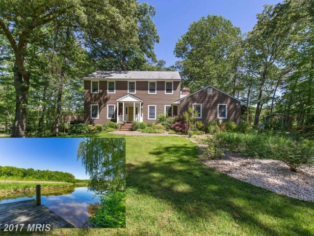 12144 Palisades Drive, Dunkirk, MD 20754 (#CA9949931) :: Pearson Smith Realty