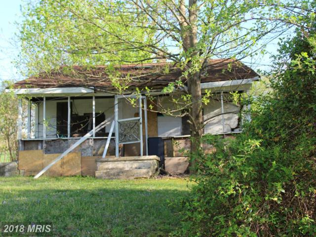 124 Mcglothlin Road, Conowingo, MD 21918 (#CC9683408) :: The Maryland Group of Long & Foster