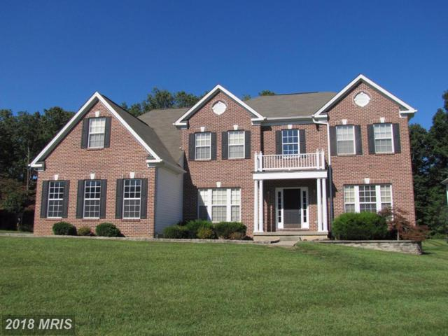 165 Forest Knoll Drive, Elkton, MD 21921 (#CC9959922) :: RE/MAX Gateway