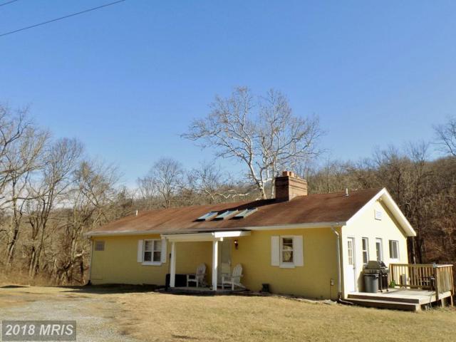 4346 Ebenezer Road, Bluemont, VA 20135 (#CL10127958) :: LoCoMusings
