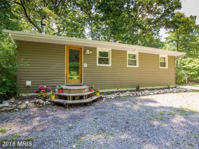 258 Anamaria Lane, Front Royal, VA 22630 (#CL10253750) :: Eric Stewart Group