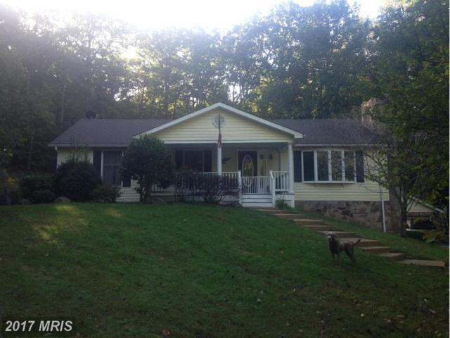 157 Lakeview Lane, Boyce, VA 22620 (#CL9790153) :: Pearson Smith Realty