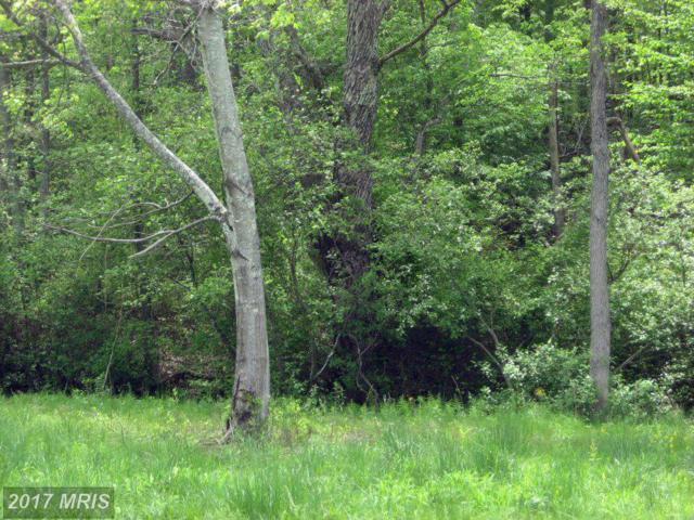 Red Leaf Lane, Culpeper, VA 22701 (#CU8274525) :: LoCoMusings
