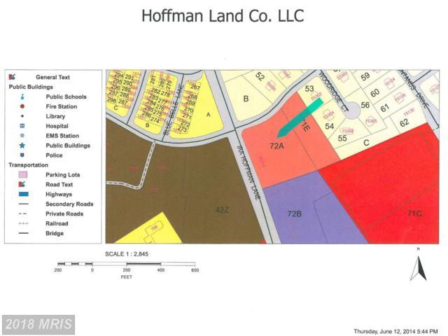 15711 Ira Hoffman Lane, Culpeper, VA 22701 (#CU8417762) :: Pearson Smith Realty
