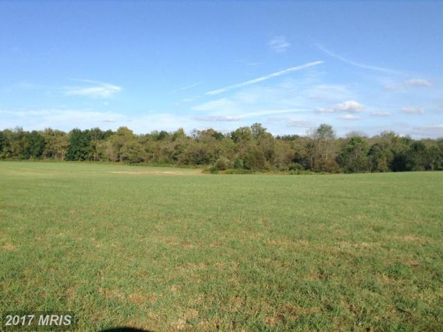 Old Barn Rd And Rixyville Rd, Rixeyville, VA 22737 (#CU9594708) :: Pearson Smith Realty