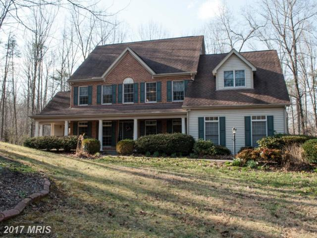 2352 Brighton Place, Jeffersonton, VA 22724 (#CU9884941) :: Pearson Smith Realty