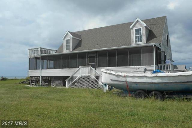 1710 Hoopersville Road, Fishing Creek, MD 21634 (#DO9768522) :: LoCoMusings