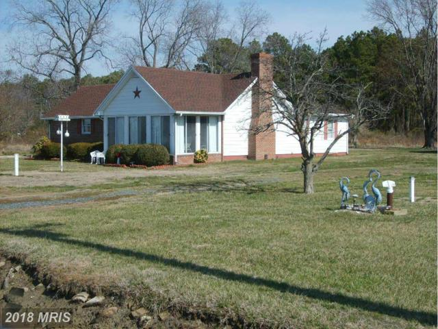 2625 Hoopers Island Road, Fishing Creek, MD 21634 (#DO9874966) :: The Maryland Group of Long & Foster