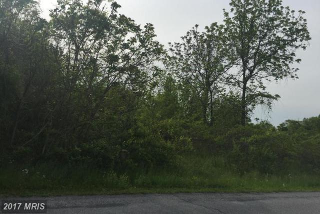 Apple Jack Drive, Mercersburg, PA 17236 (#FL9650021) :: LoCoMusings
