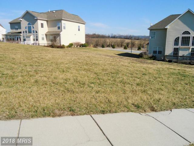 578 Evangeline Drive, Waynesboro, PA 17268 (#FL9865417) :: The Bob & Ronna Group