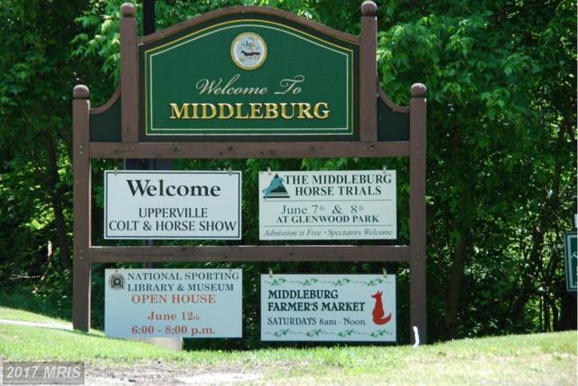 6241 John Mosby Highway, Middleburg, VA 20117 (#FQ8688413) :: LoCoMusings