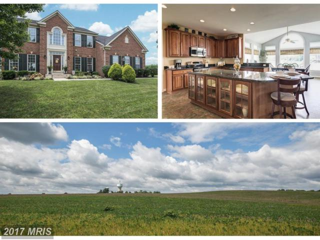 2 Rick Michael Way West Way, Brunswick, MD 21716 (#FR10017859) :: Pearson Smith Realty
