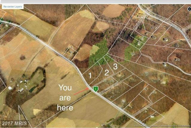 14604 Peddicord Road, Mount Airy, MD 21771 (#FR8465349) :: LoCoMusings