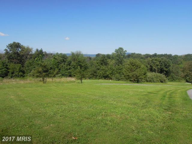 3019 Bennies Hill Road, Middletown, MD 21769 (#FR9662185) :: LoCoMusings