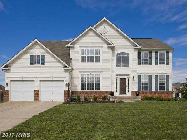 114 Fredericksburg Drive, Stephens City, VA 22655 (#FV10044973) :: LoCoMusings