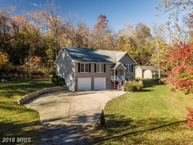 255 Orchard Dale Drive, Clear Brook, VA 22624 (#FV10054005) :: Pearson Smith Realty
