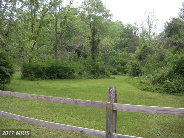 1620 Laurel Grove Road, Winchester, VA 22602 (#FV8094667) :: Pearson Smith Realty