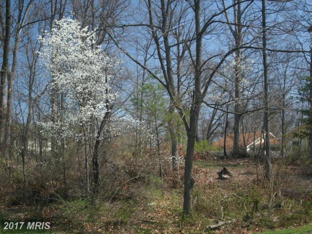 1-LOT Mill Race Drive, Winchester, VA 22602 (#FV8603025) :: The Maryland Group of Long & Foster