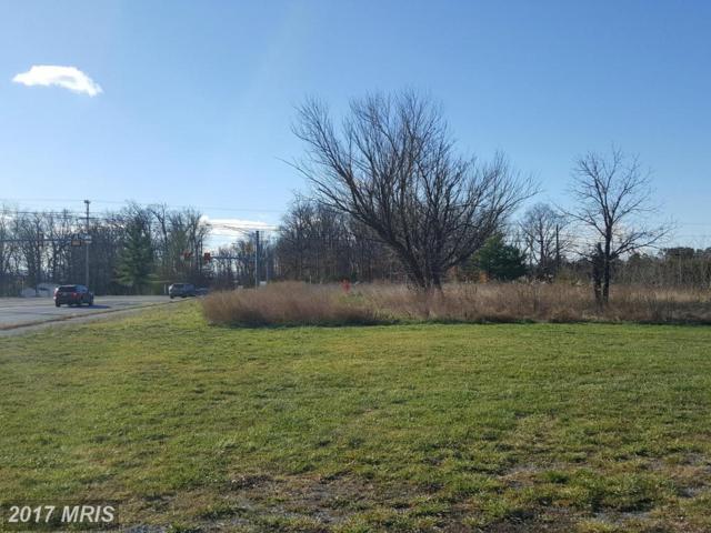 Warrior Drive, Stephens City, VA 22655 (#FV9530150) :: Pearson Smith Realty