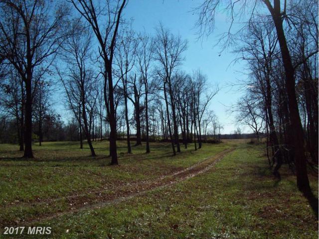 Union View, Winchester, VA 22603 (#FV9531166) :: Pearson Smith Realty